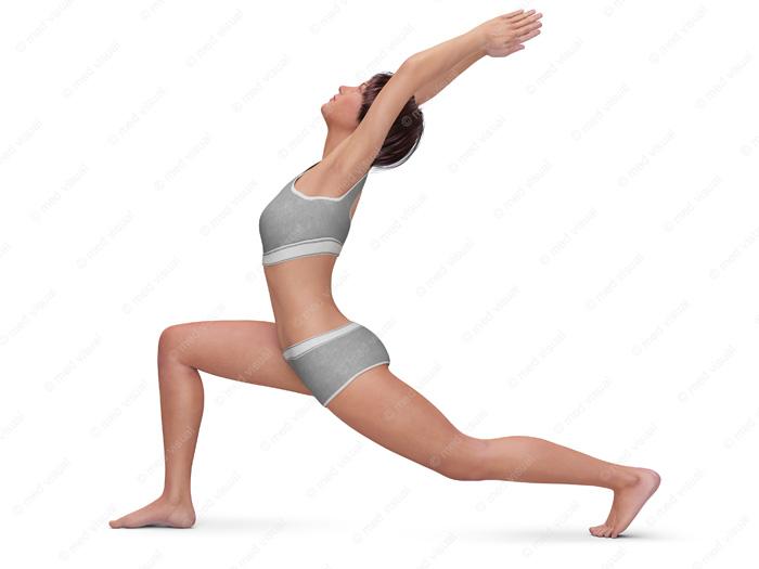 Dehnübungen und Stretching – Anleitungsillustrationen: Dehnen-Positionen