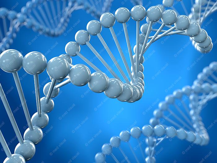 DNA Molekül 3D-Illustration