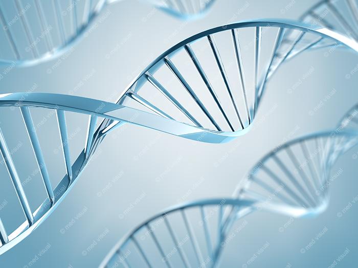 DNA Molekül 3D-Grafik