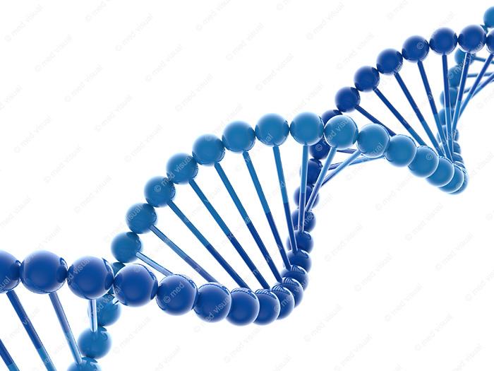 DNA Modell 3D-Illustration / wissenschaftliche Visualisierung